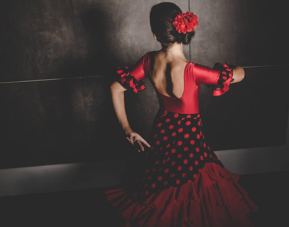 Cuando el flamenco te da la vida