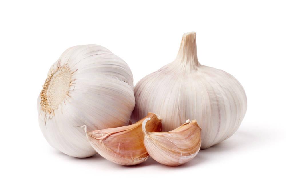 Imperio Garlic, ajos de calidad